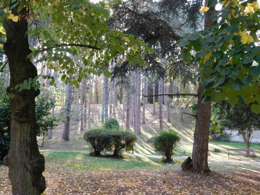 Šetnje kroz nasleđe: Upoznajte se sa prirodnim bogatstvom Sremskih Karlovaca 22.juna