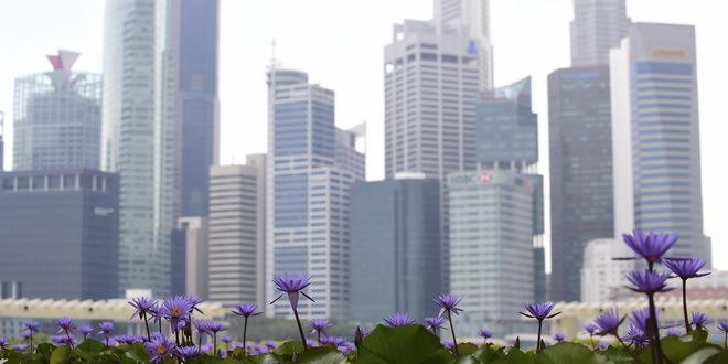 Singapur planira da testira sve migrante radnike
