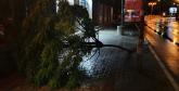 Snažno nevreme pogodilo Čačak: Iščupalo drveće, oštećen deo fasade VIDEO/FOTO