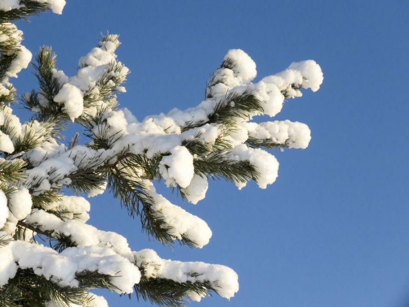 Sneg pao na Jahorini
