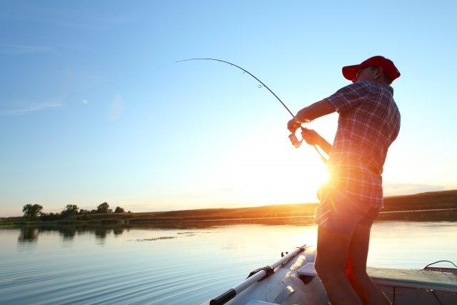 Neiskorišćen potencijal: Srbija ima 15.000 hektara ribnjaka, a mogla bi da ima 100.000