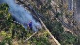 Srbija, priroda i požari: Zašto dolazi do šumskih požara
