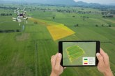 Šta će Živoradu dron i kakve veze veštačka inteligencija ima sa njegovim kukuruzom?
