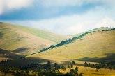 Stara semena Zlatiborskog okruga su na sigurnom: Čuva ih banka