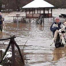 Štete od poplava u Dimitrovgradu  nadoknadiće Dunav osiguranje (FOTO)
