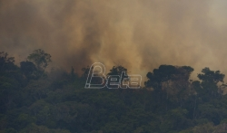 Stotine novih požara pustoše Amazoniju, vojska učestvuje u gašenju