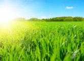 Sunčano, na severu popodne naoblačenje