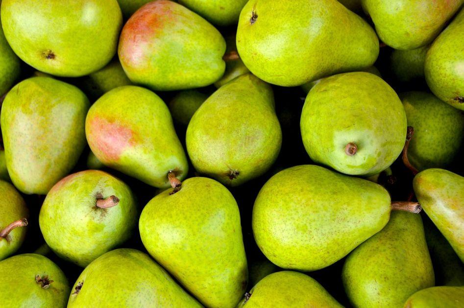 Sutra posjeta izvozniku voća u Rusiju
