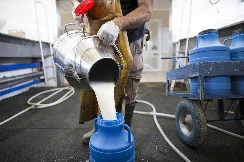 Sutra sastanak proizvođača mleka zbog niske otkupne cene