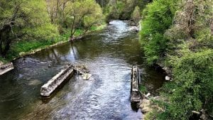 Svetski fond za prirodu ne podržava izgradnju malih hidroelektrana