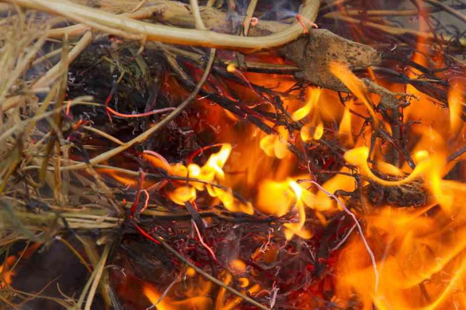 TEROR KOD ISTOKA: Zapaljena letina još jedne srpske porodice