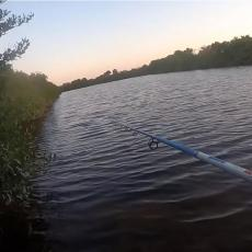 TOMI (22) OTIŠAO NA PECANJE, ZABACIO UDICU, KAD JE NEMAN ISKOČILA IZ VODE: Aligator od tri metra je krenuo ka njemu! (VIDEO)