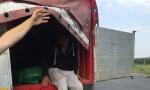 TRGOVALI LjUDIMA: Dva policajca u grupi krijumčara migranata
