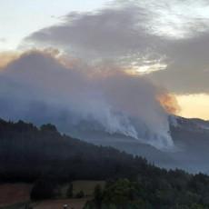 TRI HELIKOPTERA KRENULA KA NOVOJ VAROŠI: Bukti požar u Negbini, gori 150 hektara četinarske šume (FOTO)