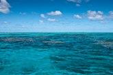 Tek što je počeo da se oporavlja: Australijski koralni greben ponovo beo