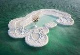 Turistička atrakcija: Drvo života na ostrvu od soli usred Mrtvog mora FOTO
