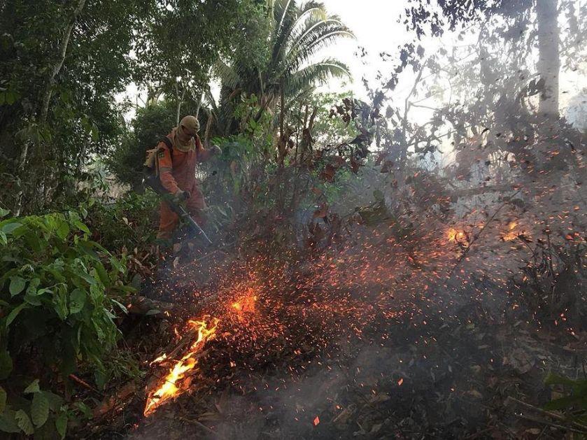 U Africi gori više požara nego u Amazoniji, ali nisu štetni