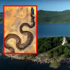U Bileći pronađen skelet PRAISTORIJSKE ZMIJE, a pored njega nešto JOŠ ČUDNIJE: Misterija koja će RAZJASNITI PROŠLOST