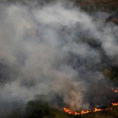 U Evropskoj uniji se više neće jesti govedina i soja iz Brazila zbog požara