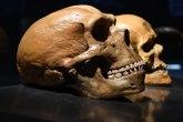 U Italiji pronađeni ostaci neandertalaca stari 60.000 godina