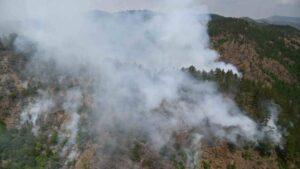 U Novom Selu se muškarac ugušio zbog požara