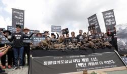U Seulu skupovi pristalica i protivnika konzumiranja psećeg mesa