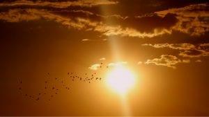 U Srbiji 25. avgusta sunčano i veoma toplo