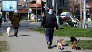 U Srbiji još 82 novoobolela i dva smrtna slučaja, ukupno 10.114 zaraženih i 215 preminulih