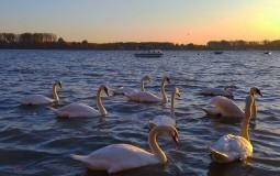 U Srbiji sutra pretežno sunčano vreme