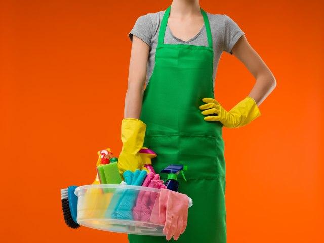 U Srbiji više od 55.000 domaćinstava angažuje radnike za kućne poslove
