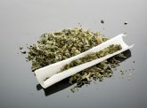 U Subotici zaplenjeno sedam kilograma marihuane