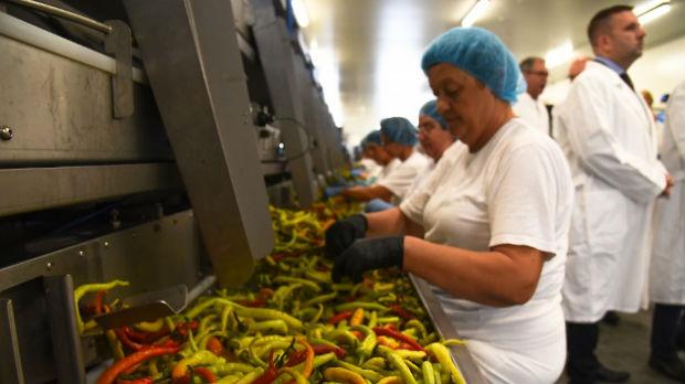 U Žablju otvoren pogon nemačke kompanije za preradu povrća