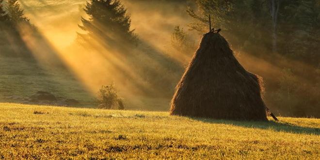 U avgustu u Srbiji više od 237.000 stranih turista