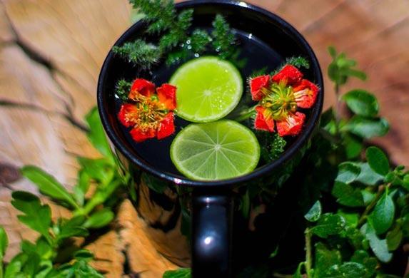 U narodnoj medicini ŽARA se smatra za najlekovitiju biljku! Leči gotovo sve!
