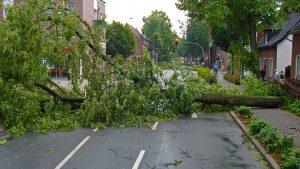 U olujnom nevremenu u Bihaću poginuo muškarac