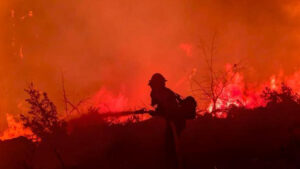 U požaru na Sardiniji izgorelo više od 20.000 hektara zemlje