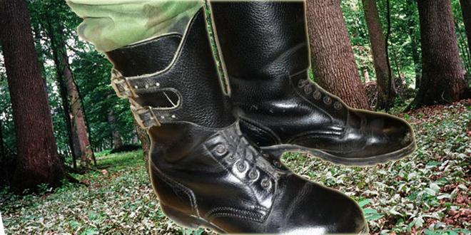 U srpskim čizmama koračaće skandinavski vojnici