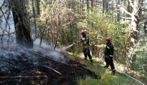 U toku gašenje požara na Mokroj Gori