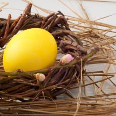 USKRŠNJI TRIK! Pomešajte 2 kašike ovog ZAČINA sa vodom i dobijte INTENZIVNO ŽUTU boju jaja! (VIDEO)