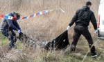 UŽAS KOD AVALE: Pronašao telo muškarca dok je skupljao seno, sumnja se da je žrtva diler droge!