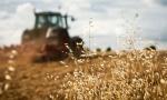 UŽAS KOD LESKOVCA: Nađen mrtav pod točkom prevrnutog traktora