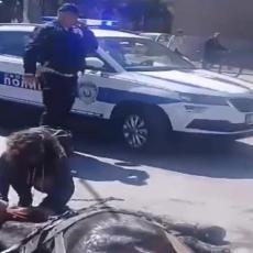 UŽASAN PRIZOR U LESKOVCU: Izmučeni KONJ UMIRE nasred ulice (UZNEMIRUJUĆI VIDEO)