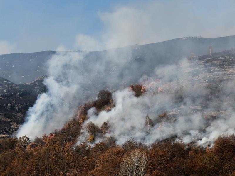 Vatra na Staroj planini širi se ka vrhu, novi požari kod Bosilegrada i Trgovišta (live blog)