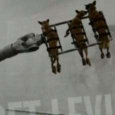 (UZNEMIRUJUĆI VIDEO) SRBIJA ZGROŽENA OVAKVIM PONAŠANJEM! Vezani psi vise u vazduhu, cvile i tresu se