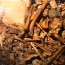 (UZNEMIRUJUĆI VIDEO) SRCE DA PUKNE OD TUGE! Jeziva istorija Trebilovaca - Trifko posle 50 godina sačekao posmrtne ostatke trudne supruge