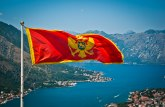 Učesnici litija na udaru, auta zapaljena i demolirana: Ovo je Montenegro