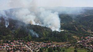 Ugašena 4 požara u Pčinjskom okrugu, šume oko Bosilegrada i dalje gore