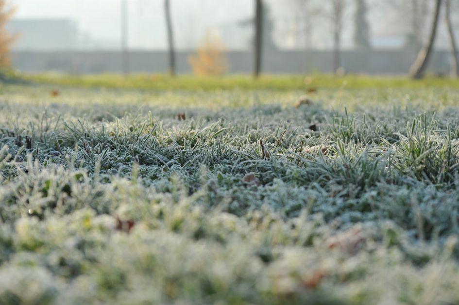 Ujutru mraz i magla, posle sunčano, do 7 stepeni