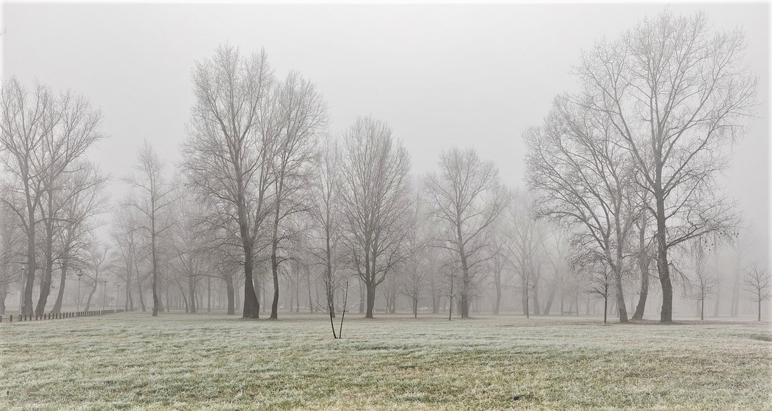 Ujutru slab mraz, tokom dana sunčano i toplije