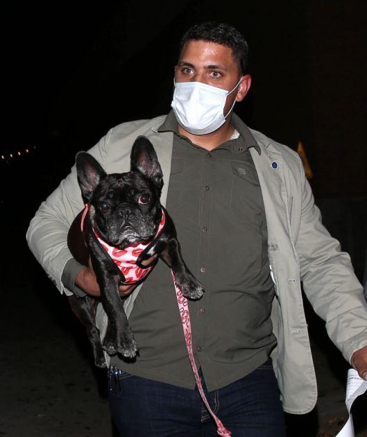 Ukrali pse Ledi Gage, pritom upucali šetača pasa 4 puta u grudi!